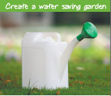 Create a water saving garden