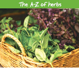 The A-Z of herbs